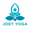 Joey Yoga - Bristol Harbour Hotel