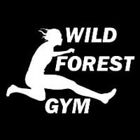Wild Forest Gym