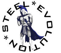 Steel Evolution Martial Arts