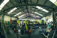 Iron Wolf Gym