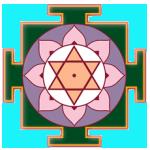 Mysore Bristol - Yogasara