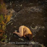 Dance Pandemic - Zahida Palma Camden