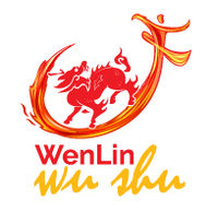 Kung Fu at WenLin Chinese School